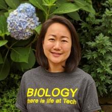 Chung Kim, Academic Program Coordinator II, Biology