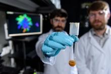 Yeast snowflake in test tube